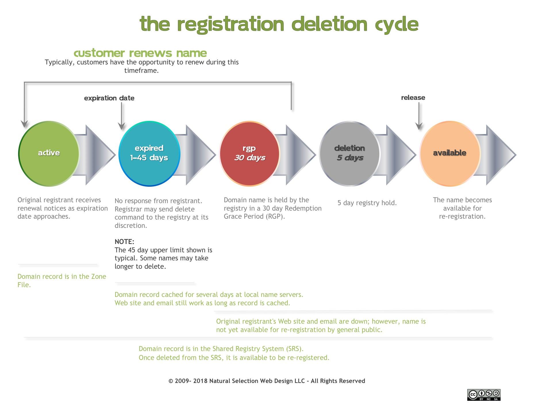 domain life cycle info
