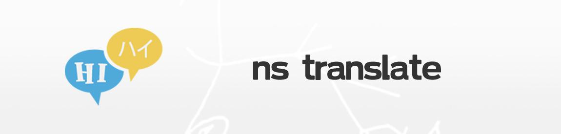 NS Translate